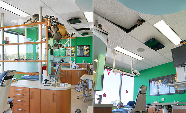 woodland critters in a dental office