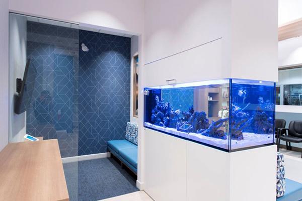 dental-office-color-design-blue2